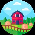 031-farm